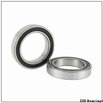 60 mm x 110 mm x 28 mm  ISO SL182212 cylindrical roller bearings