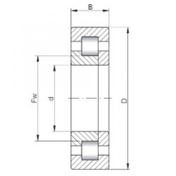 75 mm x 130 mm x 41,28 mm  ISO NUP5215 cylindrical roller bearings