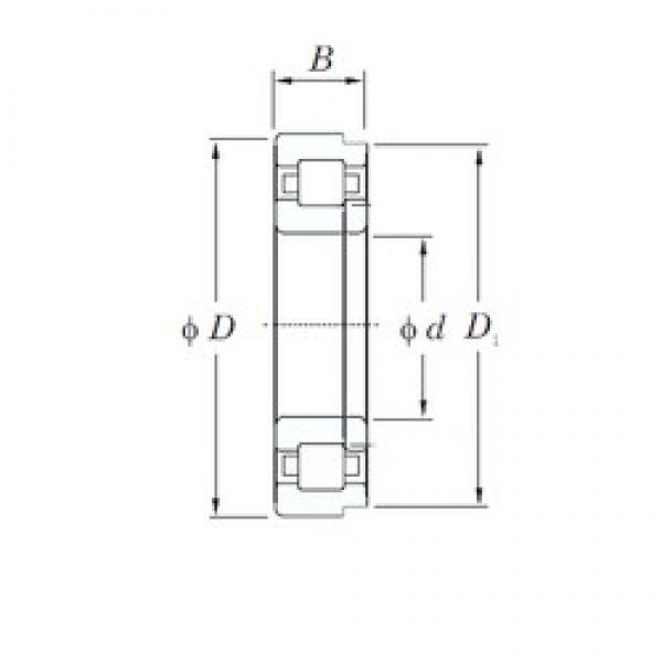 160 mm x 290 mm x 48 mm  KOYO NUP232 cylindrical roller bearings #2 image
